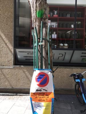 """""""Arbre à abattre ! Prière de ne pas attacher de vélo !!"""""""