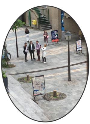 Ariel Weil lors d'une inspection sur site le vendredi 25 juin 2021. La mairie informe que les arbres étaient malades.