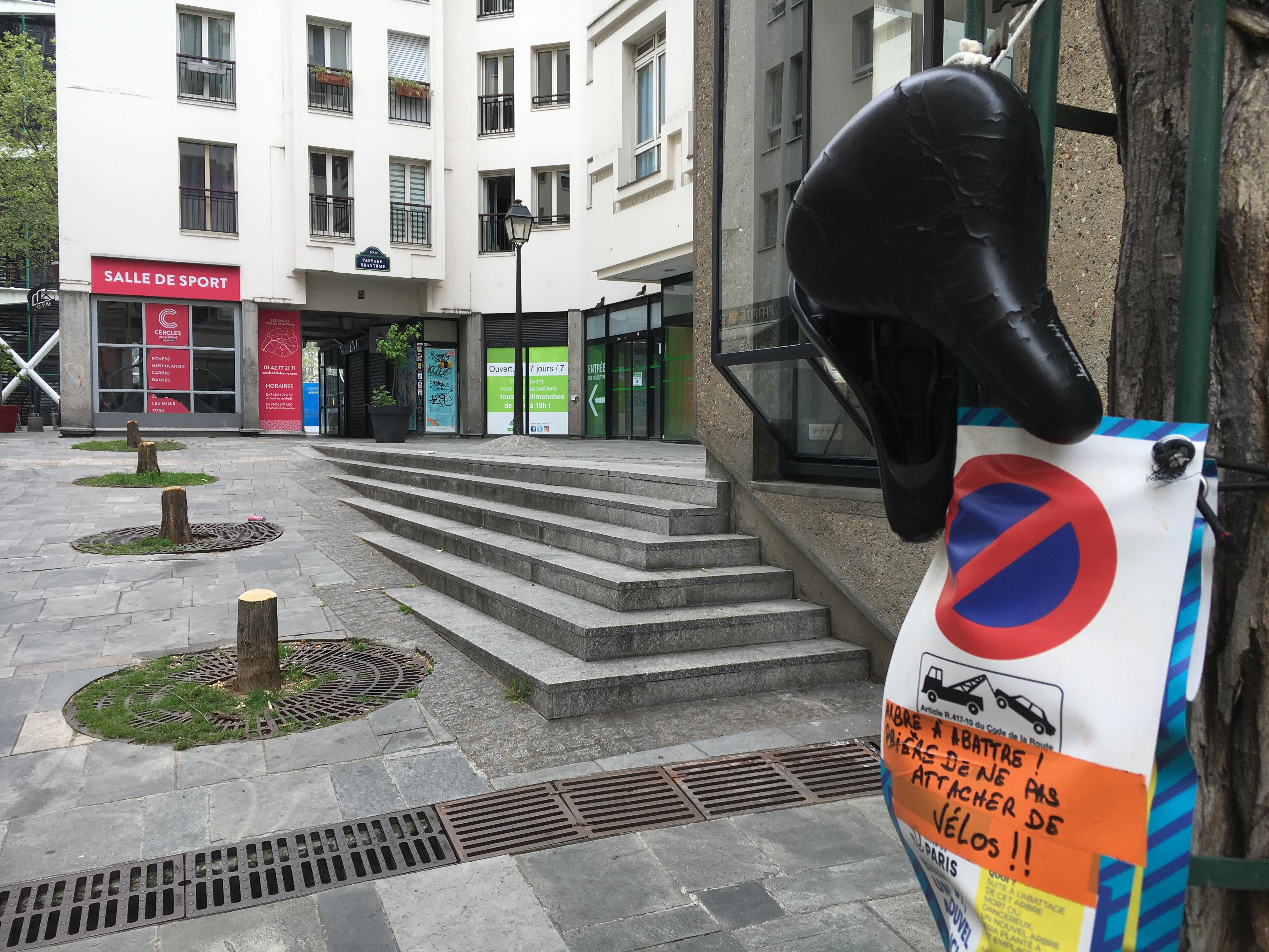 La Mairie de Paris Centre donnera en juin 2021 des explications sur cet abattage en plein cœur d'un quartier privé, ouvert au public.